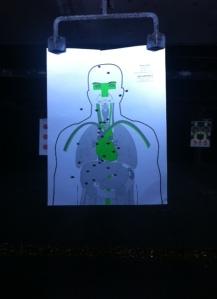 torso target